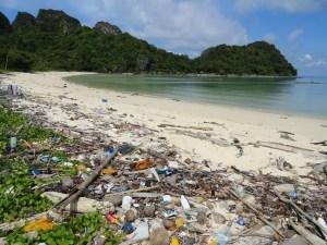 Ogni minuto riversiamo nel Mediterraneo l'equivalente di 33mila bottiglie di plastica !!!!!