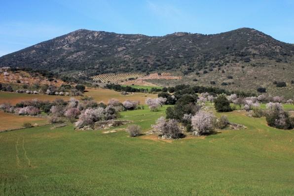 Sierra Vieja desde la Sierra del Molino