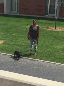 Asha Chandy taking Bruce for a walk on campus March 24 2017