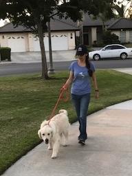 Sonya Christian walking Neo Oct 8 2017