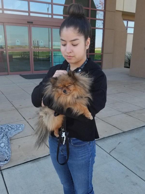 Student holding dog