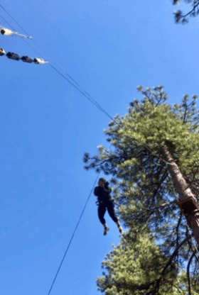 Woman free being hoisted to zip line platform in tree.
