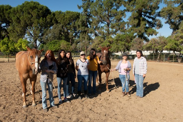 6 students and Andrea stand with the two horses.