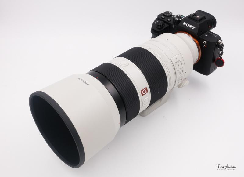 Sony FE100-400 GM-553
