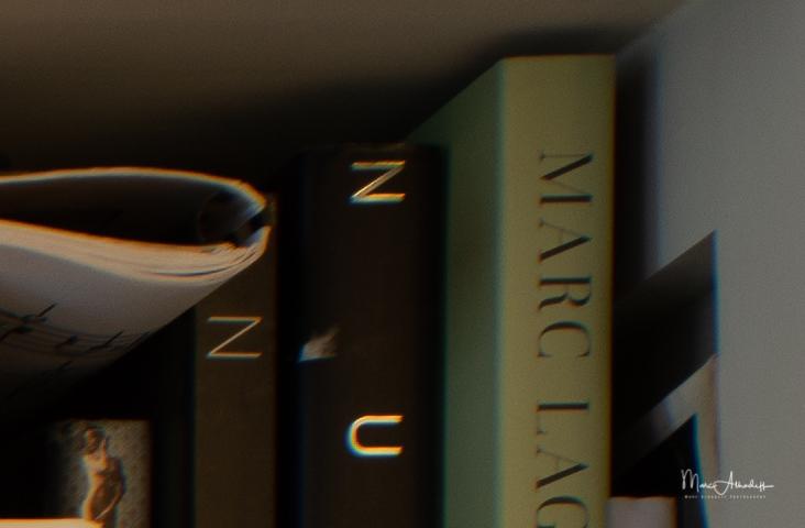F8, Meyer Optik, Trioplan 35mm F2.8- ISO 100-2,0 s 010