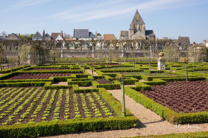 Jardins du Château Villandry-026
