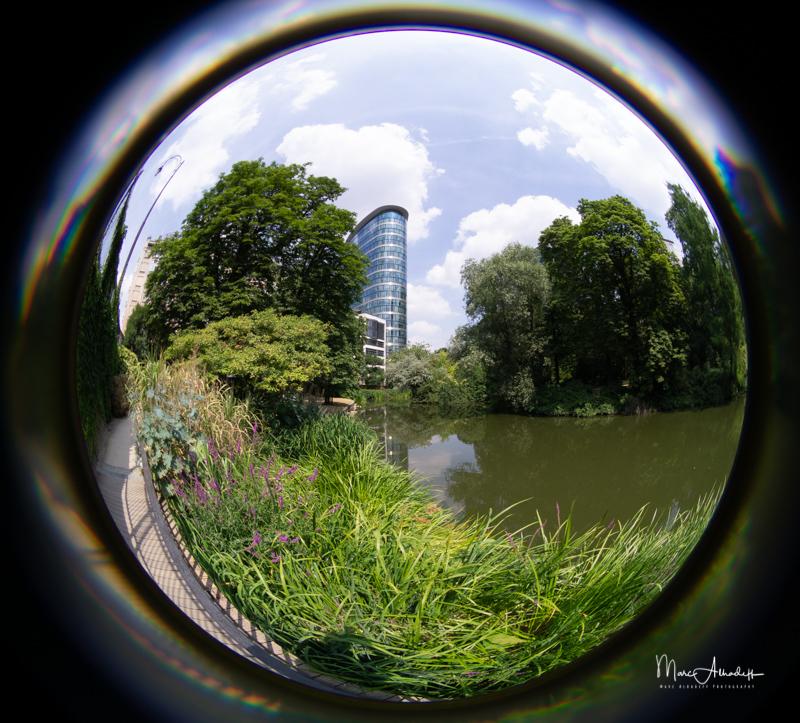Lensbaby 5.8mm F3.5 Circular Fisheye- ISO 100-1-100 s 010