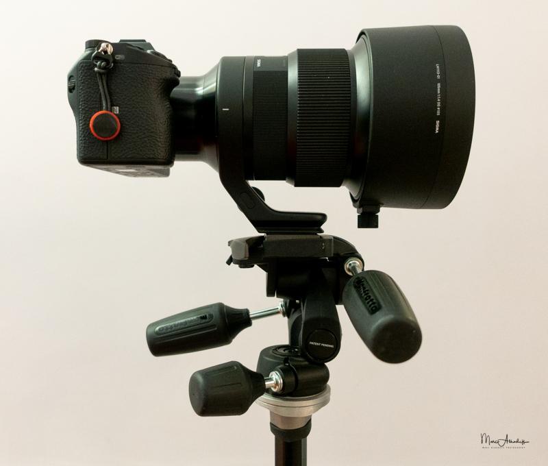Sigma 10mm F1.4 DG HSM Art-16