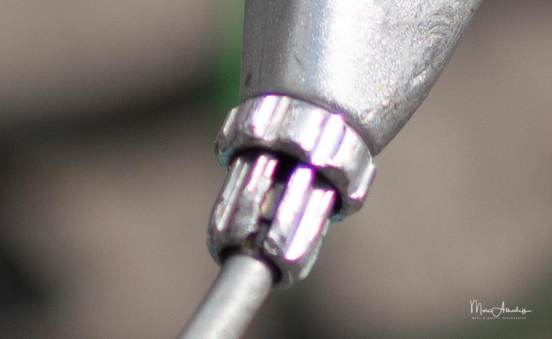 FE 35mm F1.8 at 35 mm - ¹⁄₅₀₀₀ s à ƒ - 1,8 à ISO 100-1026-2