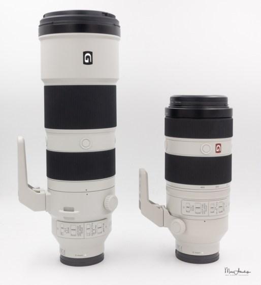 Sony FE 200-600 F5.6-6.3 G OSS-01