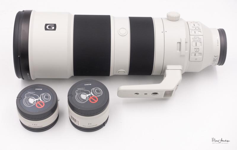 Sony FE 200-600 F5.6-6.3 G OSS-08