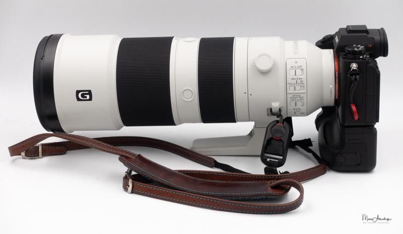 Sony FE 200-600 F5.6-6.3 G OSS-18