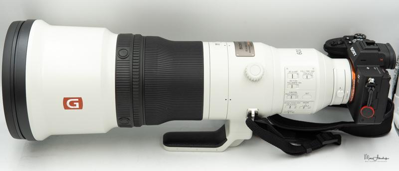 Sony FE 600 F4 GM OSS-01