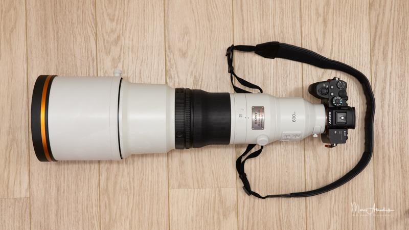Sony FE 600 F4 GM OSS-23