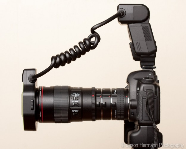 Ultimate Macro Camera Set-Up