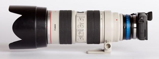 Nex-7 w/ Canon 70-200mm Lens