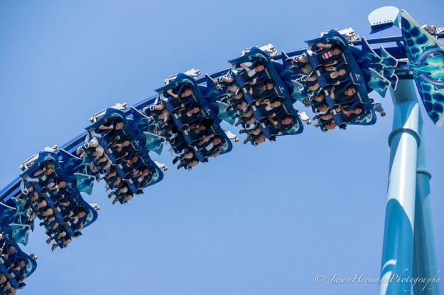Seaworld - Sony Nex-6 w/ sel55210 lens @ 55mm, f/4.5, 1/2500sec, ISO 400 - 100% Crop