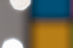 Sony RX10 @ f/8, 200mm, ISO 100, Raw Quality