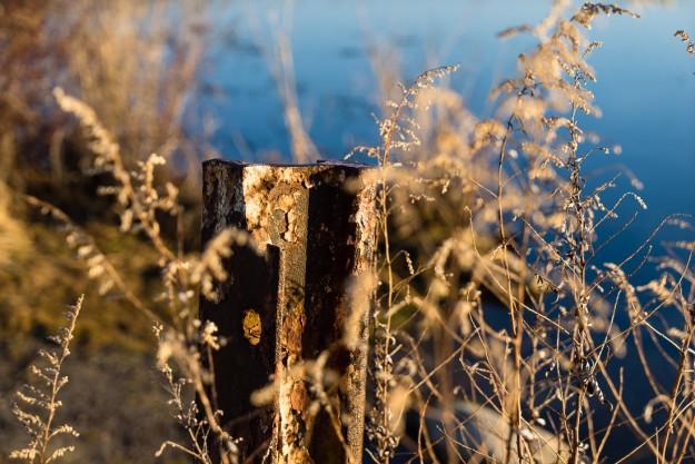 Sony A7r w/ 24-70mm f/4 OSS Lens @ 70mm