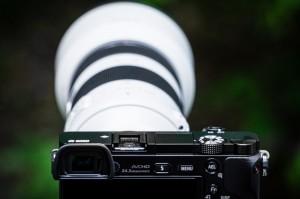 A6000 w/ E-mount 70-200mm f/4 OSS G Lens