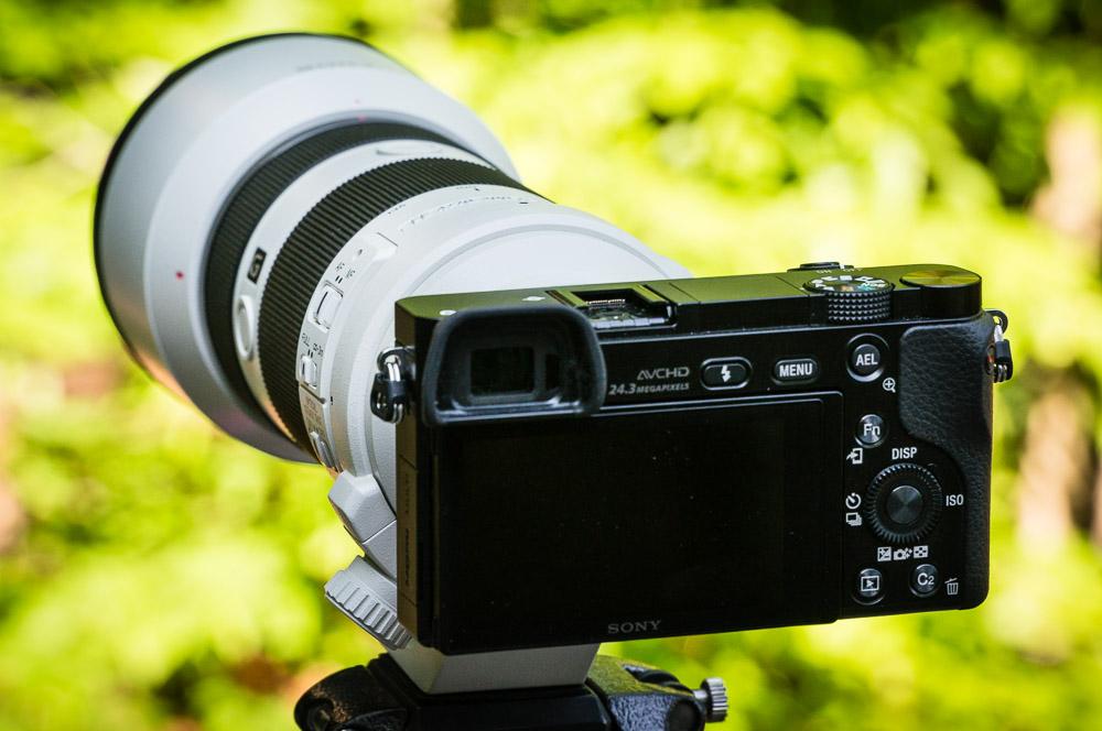 Sony A6000 w/ 70-200mm f/4 OSS G Lens