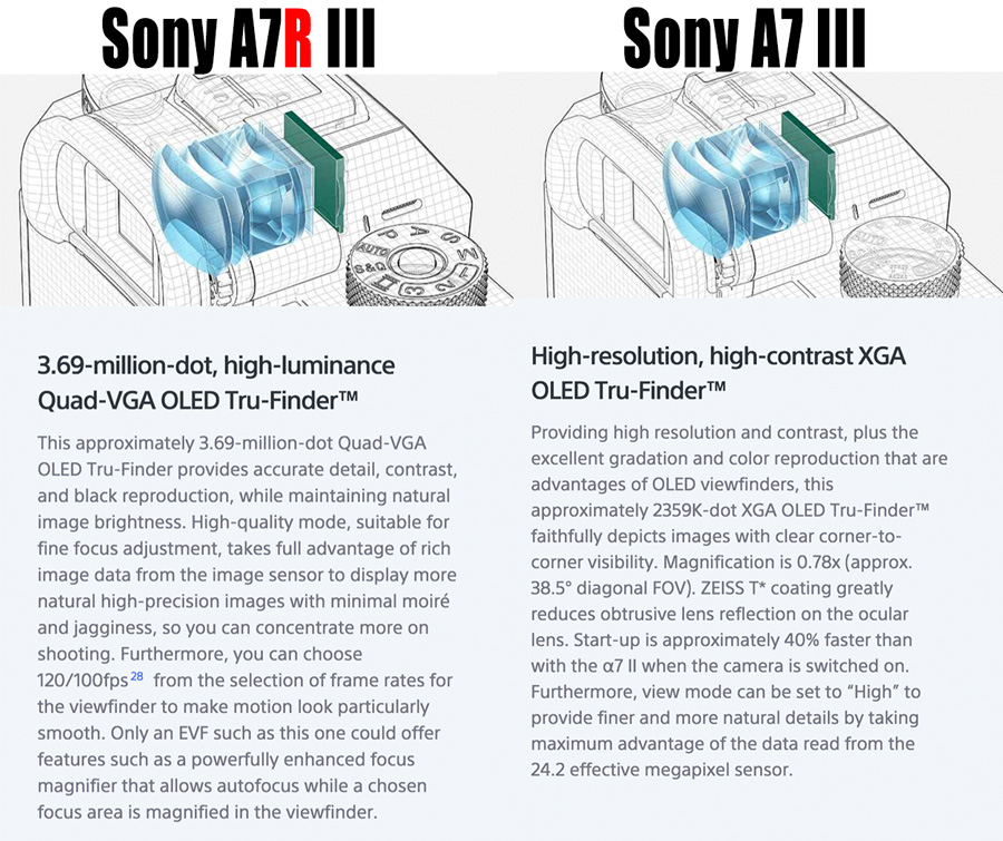 Sony A7r III vs Sony A7 III – Why Go For The A7r III
