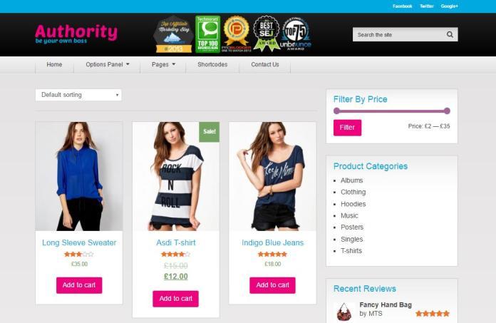 Top 20 theme WordPress tốt nhất cho website bán hàng - Ảnh theme 6