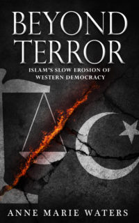 Image result for waters beyond terror