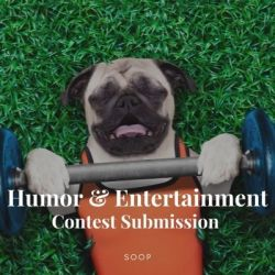 Humor and Entertainment