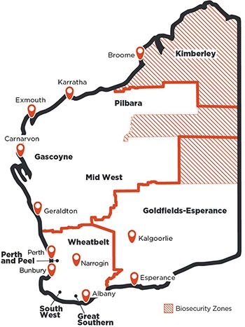 WA COVID-19 Restrictions: WA COVID-19 Roadmap - Phase 2 ...