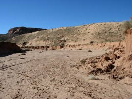 Desert Photo from NOAA
