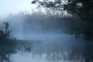 Fog on the river in the morning. Public domain image courtesy of absfreepic dot com.