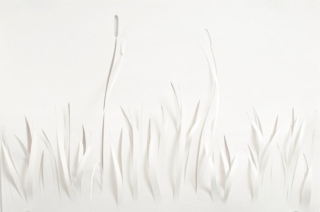 Studies in Paper Cutting by Sophia Sobers