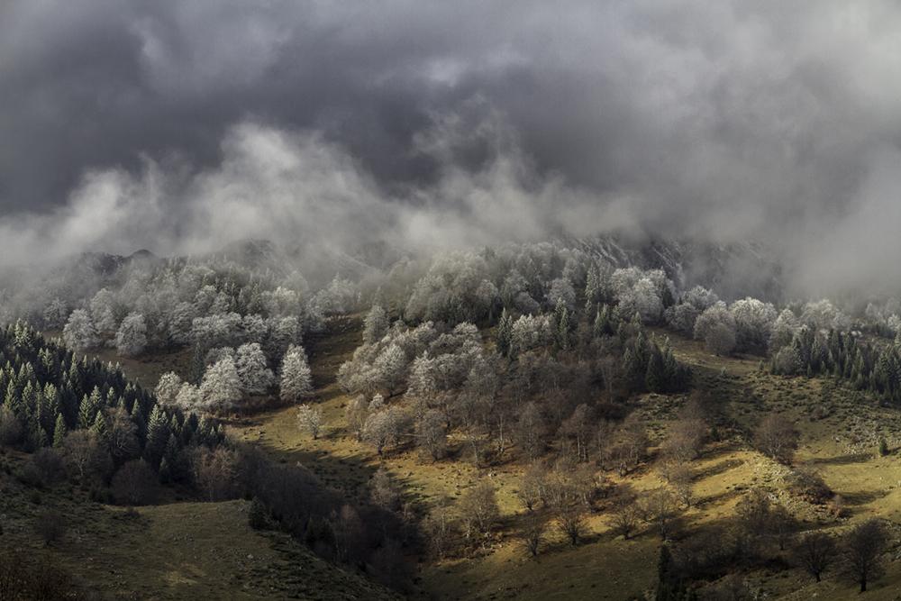 Brume d'automne en Carpates© Sophie de Roumanie