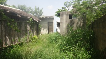 03-view-on-the-front-of-the-hostel-from-the-hamac-zone