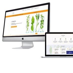 Refonte du site internet de la Pharmacie de la Baleine