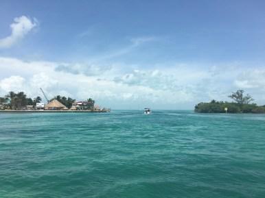 Caye Caulker. Escursione al reef