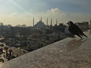 Istanbul, panorama
