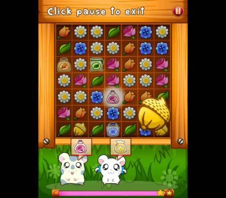 Screenshot from the Hamtaro IOS Game