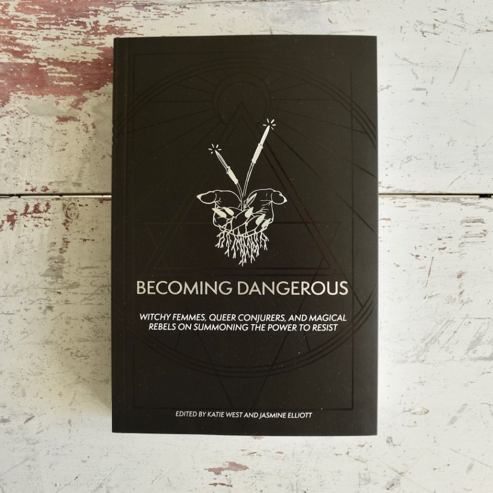 Becoming-Dangerous-Book