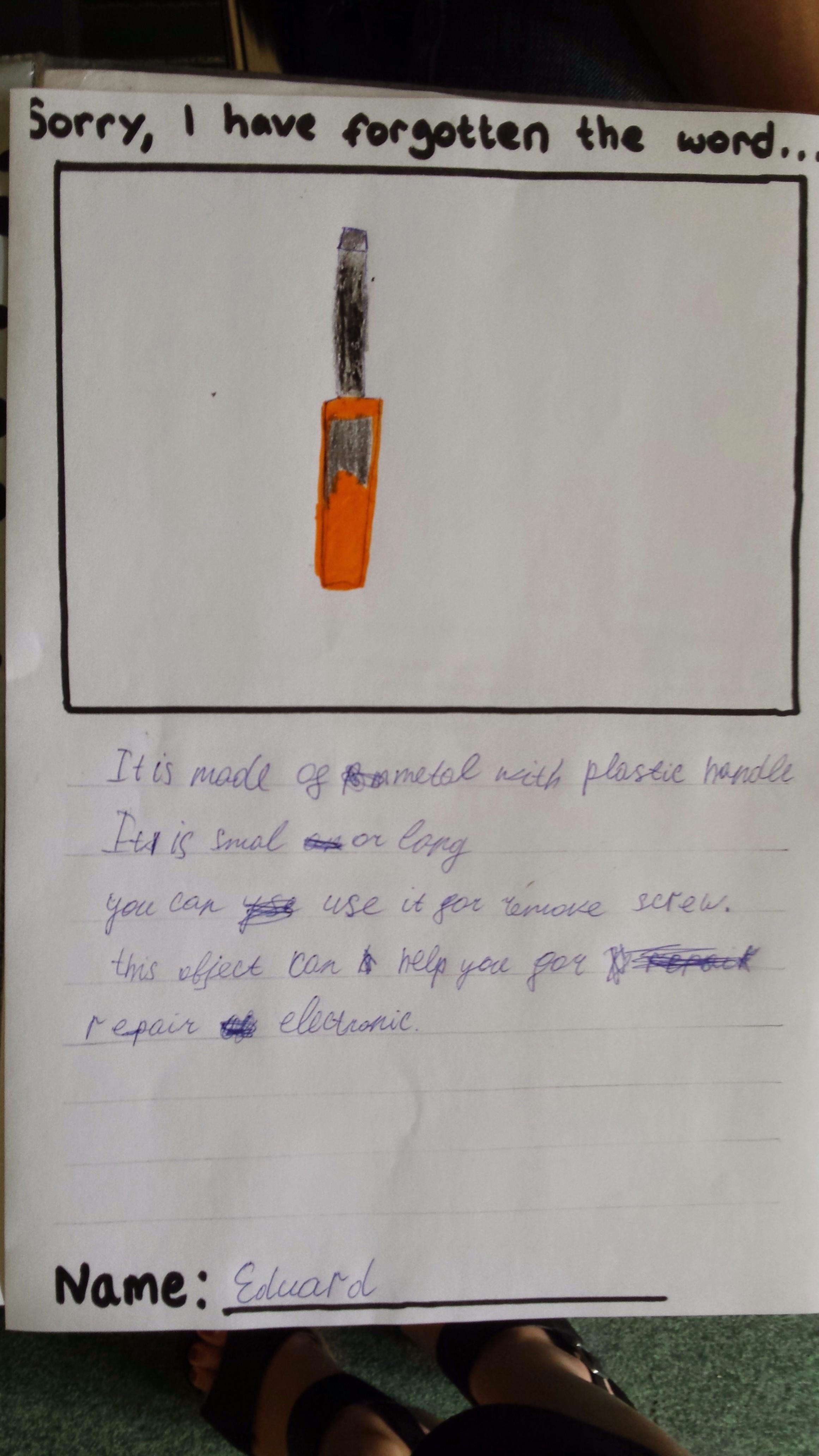 Describing Objects Sophiesensei