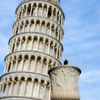Travel: 10 things to see in Pisa