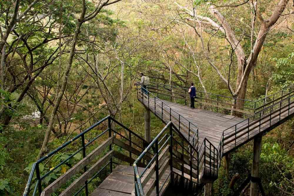 ecotourism ecotourist