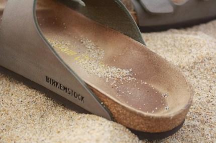 beach-1059536_640