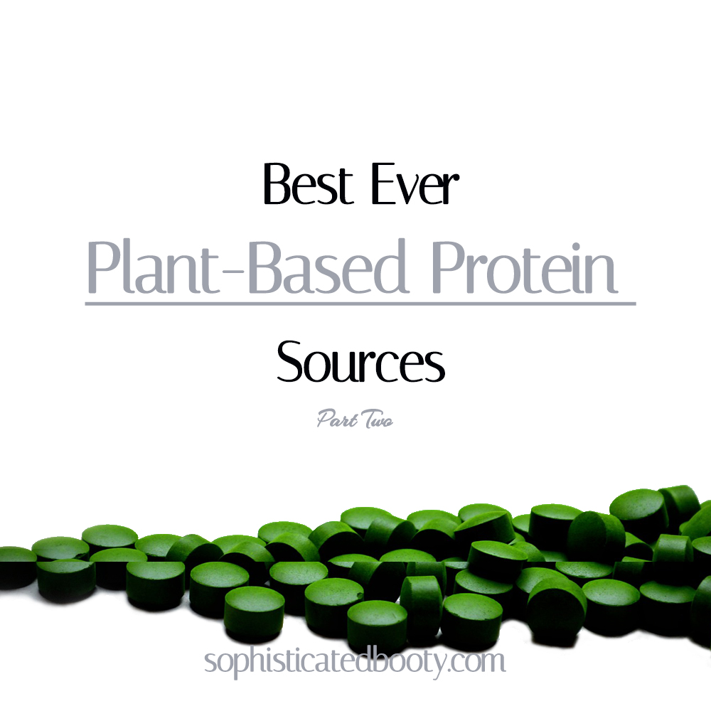 Best Ever Plant Based Protein Sources Part-Two - Sophisticated Booty