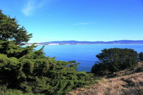 Point Reyes Hike