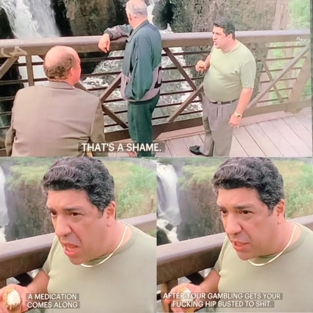 Pussy Bonpensiero near the waterfalls with Hesh Rabkin in The Sopranos Pilot