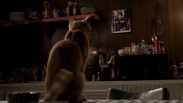 Sopranos Made in America Cat Staring At The Wall