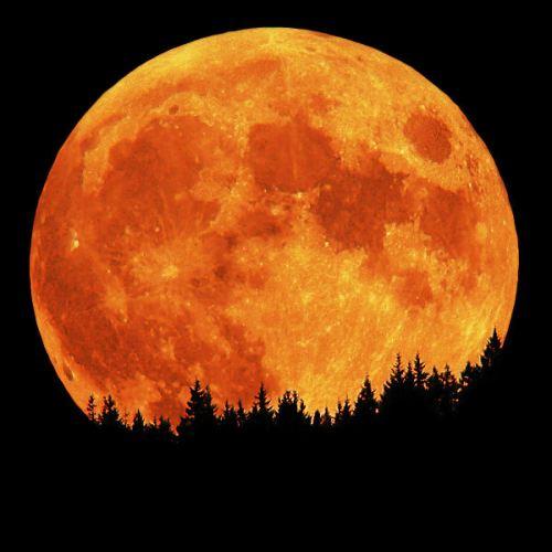 Hunter's Moon on October 29