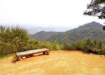 林道,山道,アウトドア の 無料 写真